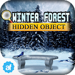 Hidden Object Winter Forest