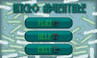Screenshot of Micro Adventure