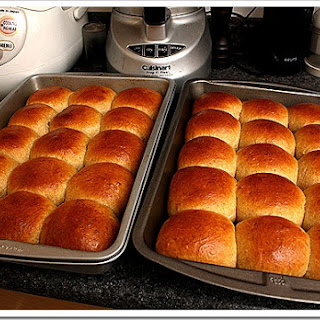 Active Dry Yeast Rolls Recipes.