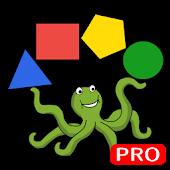 Oqto Diagram pro