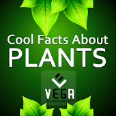 Cool Facts about Plants