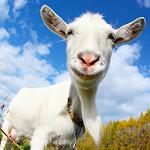 Crazy Goat FREE v4.34