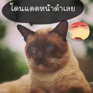 【免費社交App】รูปคอมเม้นท์เฟสบุ๊ค รูปตลก 10-APP點子