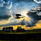 polje traktor.jpg