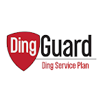 Ding Guard - Dent Wizard