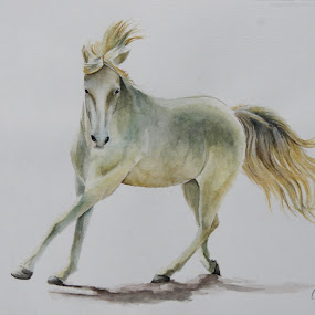 White Making the Rounds by Alicia McNally - Painting All Painting ( watercolor, barrels class, horse, horse show, equine paintings, white horse,  )