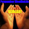 Peygamber Efendimizin Duaları icon