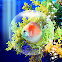 Coral Fish icon