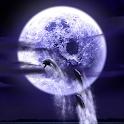 Dolphin Fullmoon logo