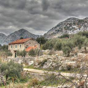 Vrh Desne by Igor Antolović - Landscapes Mountains & Hills