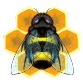 Honeybeez (2 Player) *Beta*
