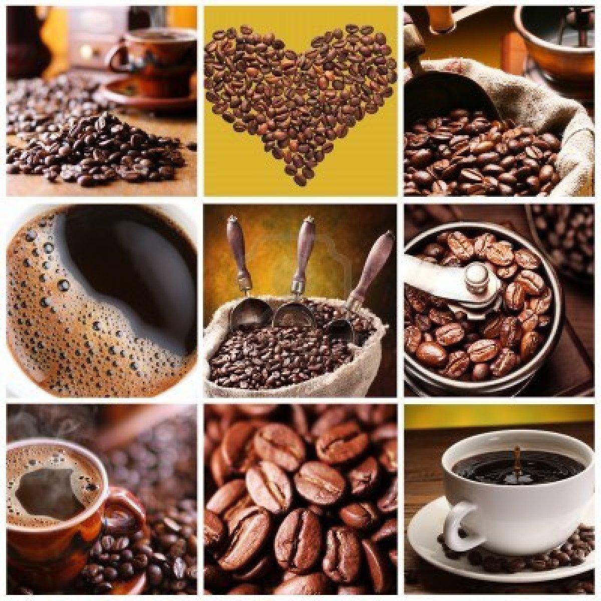 Beneficios y tipos de café