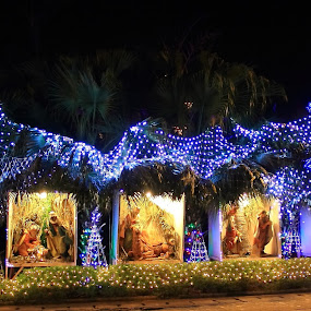 Jesus Birth by Sonika Sharma - Public Holidays Christmas ( birth, lighting, decoration, jesus, christmas, object )