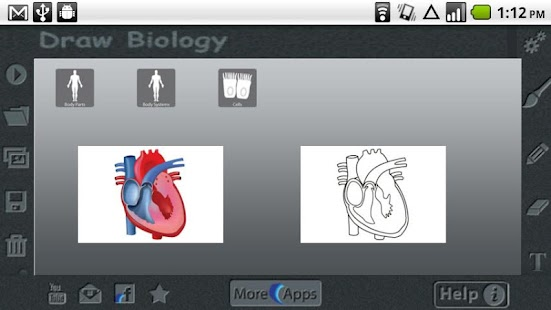 Download Draw Biology Apk On Pc Download Android Apk