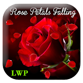 Rose Live Wallpaper 3D