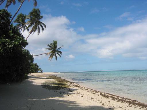 beach-leleuvia-fiji - A beach on Leleuvia, Fiji.