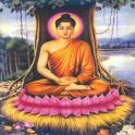 Kinh Đại Bi Chú icon