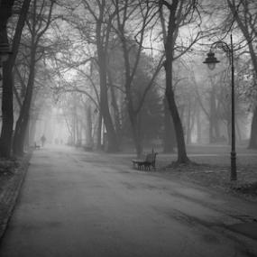 by Tatjana Koljensic - Black & White Street & Candid