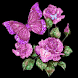 Amazing Pink Roses Live wallp