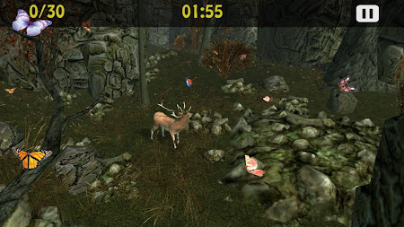 Butterflies Catch Craze 3D 1.0 screenshot 6202