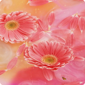 Flower Live Wallpaper HD
