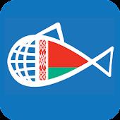 Рыбы Беларусі
