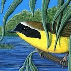 Nicole Perretta's Bird Calling icon