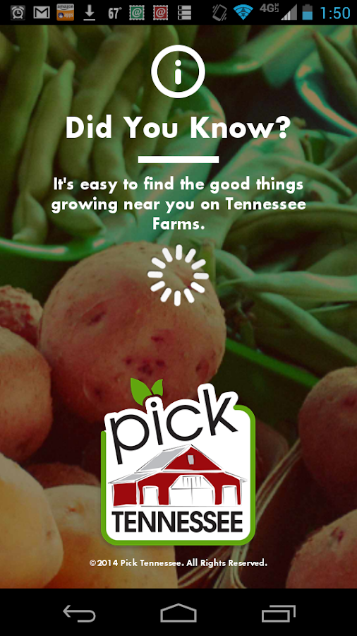 Pick Tennessee- screenshot