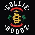 Collie Buddz logo
