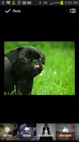 Screenshot of Photo Effects + Crop Wallpaper