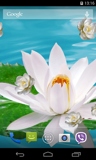 Lily on Water Live Wallpaper