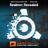 NI Reaktor: Revealed