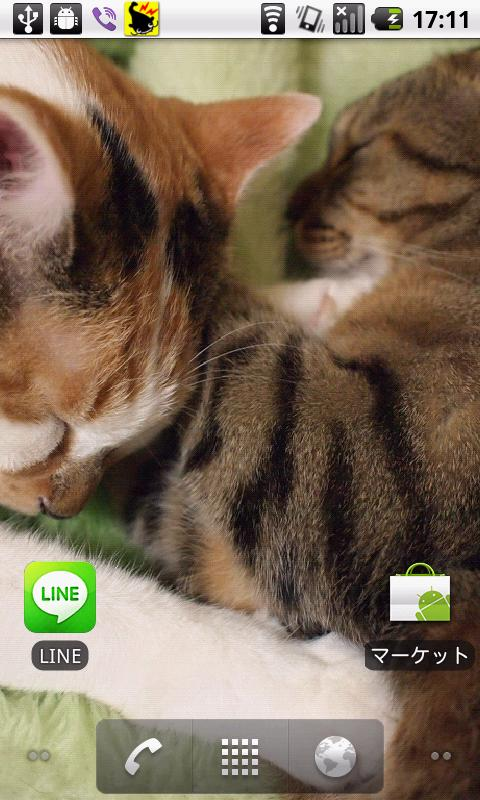 Cats Charity Live Wallpaper- screenshot