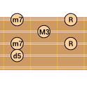 DG Charango Chord Patterns icon