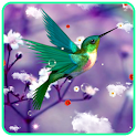 Humming Bird Live Wallpaper icon