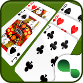 The Best Solitaire + 40 Games