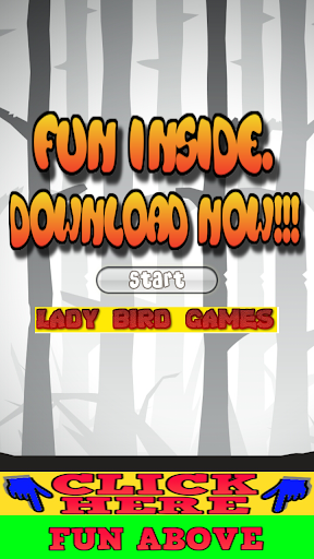 Lady Bird Games for Kids