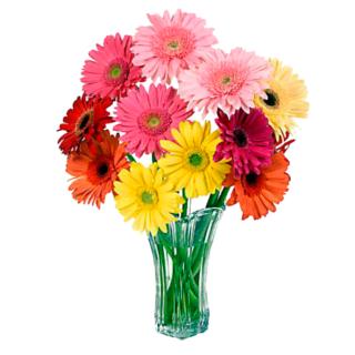 Widgets store: Flower-2