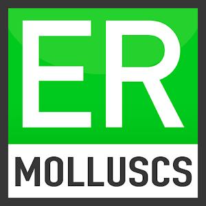 Easy Recorder Land Molluscs