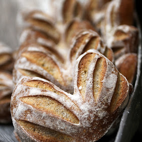 Freshly Baked by Renato Marques - Food & Drink Cooking & Baking ( fresh, bread, baked,  )