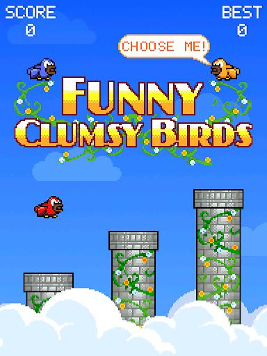 Funny Clumsy Birds