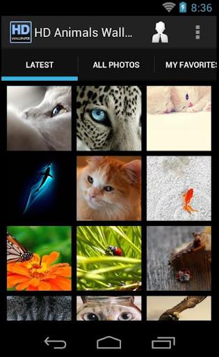 Animals Wallpaper Free HD