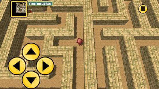 Maze 100