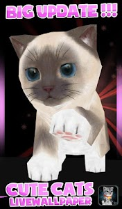 Fluffy Cat Pet 3D HD lwp v1.0