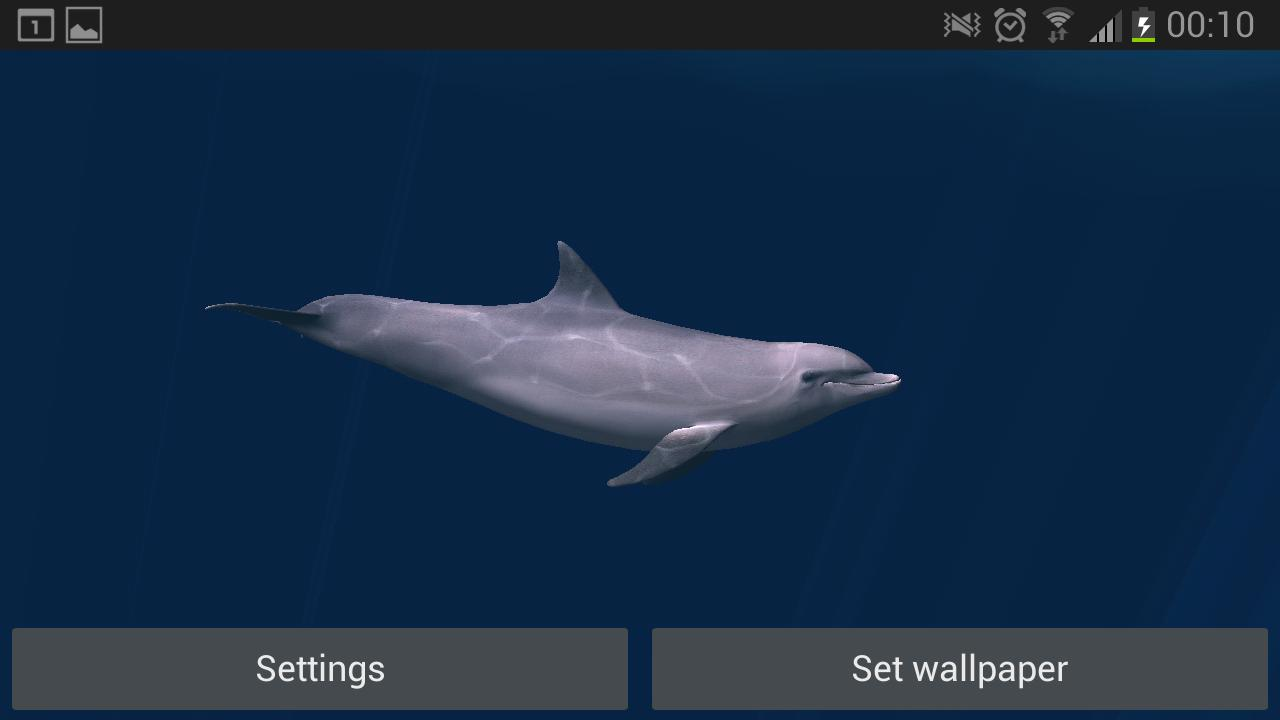 Dolphins Real 3D- screenshot