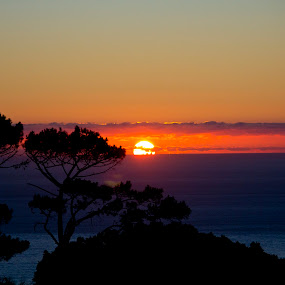 Sunset  by Reon Rich - Landscapes Sunsets & Sunrises ( sunset, signal hill, cape town,  )