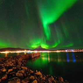 Northern lights over Sortland by Marius Birkeland - City,  Street & Park  Skylines ( skyline, sky, aurora borealis, aurora, city,  )
