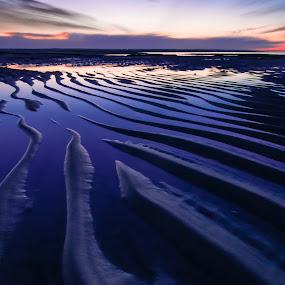 Sand Wave Sunset Portrait by Matthew Robertson - Landscapes Beaches ( sand, sunset, long exposure, night, ocean, sunrise, beach, cape cod,  )