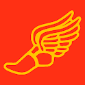 Roman Runner icon