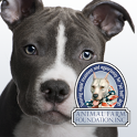 Talking Pit Bull Dogs icon